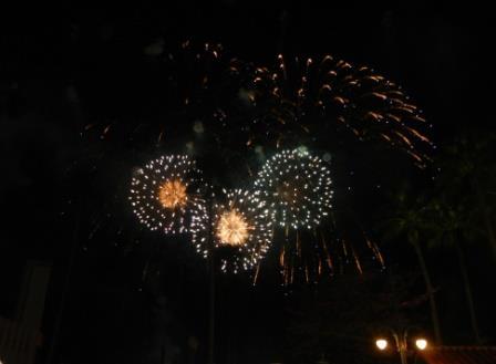 Disney World fireworks new years eve