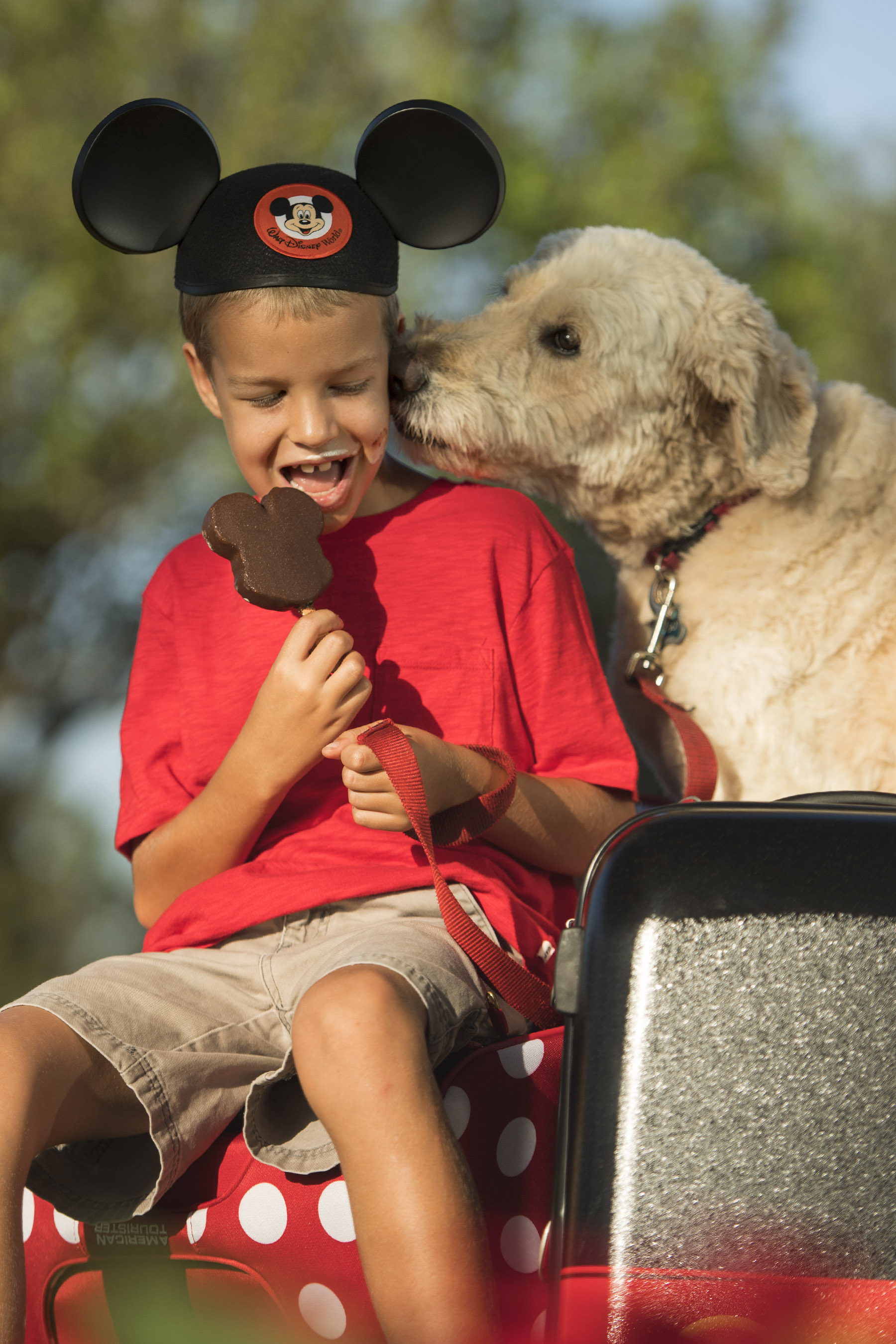 Dogs Welcome at Select Walt Disney World Hotels