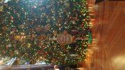 Animal Kingdom Lodge - Christmas 2017 | Disney World Photos
