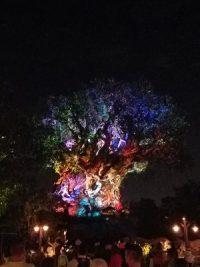 Tree of Life (Disney World Attraction)