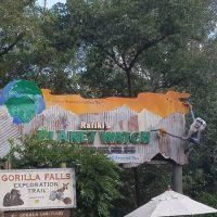 Rafiki's Planet Watch (Disney World Attraction)