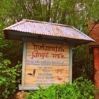 Maharajah Jungle Trek (Disney World Exhibit)