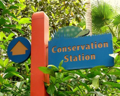 Conservation Station (Disney World Exhibit)