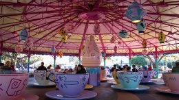 Mad Tea Party disney world