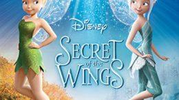 Secret of the Wings (2012 Movie)