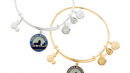 The Lion King ''Hakuna Matata'' Bangle by Alex and Ani | Disney Jewelry