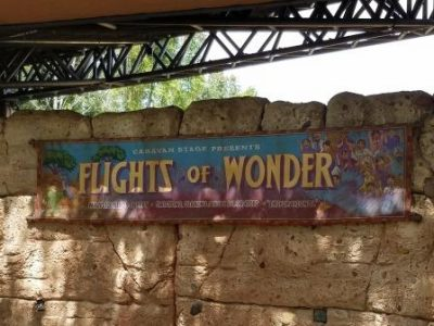 Flights of Wonder | Extinct Disney World Attractions