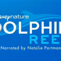 Dolphin Reef (Disney+ Show)
