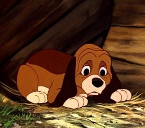 copper The Fox and the Hound disney