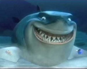 finding nemo bruce the shark