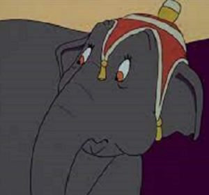 Prissy the Elephant dumbo